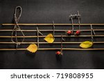 musical notes conception.... | Shutterstock . vector #719808955