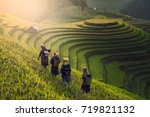 vietnamese farmers walking over ... | Shutterstock . vector #719821132