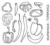 pepper vector illustration.... | Shutterstock .eps vector #719892412