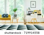 plant on cabinet next to yellow ...   Shutterstock . vector #719914558