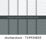 luxury geometric vector... | Shutterstock .eps vector #719934835