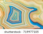amazing detailed and colorful... | Shutterstock . vector #719977105