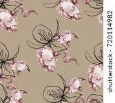 monochrome watercolor roses... | Shutterstock . vector #720114982