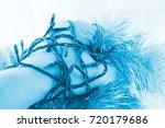hand wrapped in garlands... | Shutterstock . vector #720179686
