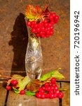 Small photo of autumn. Garden berries. Berries of Kalina. on a branch.