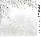 twigs of tree covered of... | Shutterstock . vector #720326746