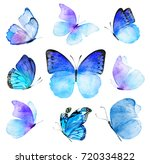 Watercolor Composition Of Blue...