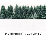 Small photo of Spruce tree forest covered by fresh snow during Winter Christmas time. This winter scene is almost duotone due to the contrast between the frosty spruce trees, white snow foreground and white sky.