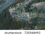 texture of oil paint | Shutterstock . vector #720568492