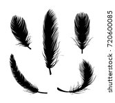 bird feather vector... | Shutterstock .eps vector #720600085