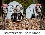 Zombie And Skeleton Decoration...