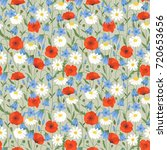 floral summer seamless pattern... | Shutterstock .eps vector #720653656
