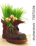 Easter golden eggs in old shoes, with fresh grass   Happiness  you can be found everywhere, just look around ourselves - stock photo