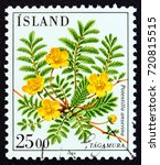iceland   circa 1984  a stamp... | Shutterstock . vector #720815515