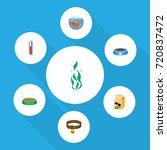 flat icon pets set of nutrition ... | Shutterstock .eps vector #720837472