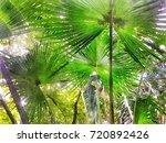 scenery of public natural... | Shutterstock . vector #720892426