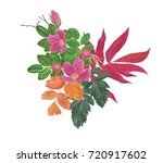 watercolor painting autumn... | Shutterstock . vector #720917602