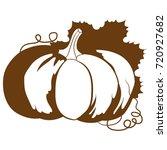 pumpkin. vector illustration. | Shutterstock .eps vector #720927682
