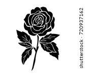 isolated black rose  flower... | Shutterstock .eps vector #720937162