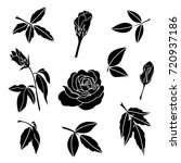 element of black rose and... | Shutterstock .eps vector #720937186