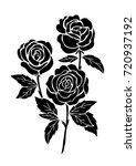 isolated black rose  flower... | Shutterstock .eps vector #720937192