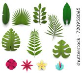 set of cartoon tropical leafs... | Shutterstock .eps vector #720953065
