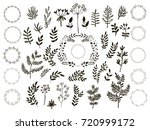 big set of flowers and herbs.... | Shutterstock .eps vector #720999172
