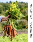 farmer holding in hand a... | Shutterstock . vector #721084396