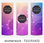 banner template  of octagon...   Shutterstock .eps vector #721151422