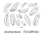 feather bird vector hand drawn...   Shutterstock .eps vector #721189102