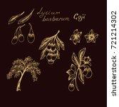 goji  lycium barbarum | Shutterstock .eps vector #721214302