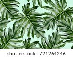 beautiful tropical leaves ... | Shutterstock . vector #721264246