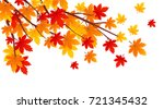 Autumn Leaves Vector...