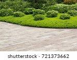 hardwood floors and plant in... | Shutterstock . vector #721373662