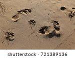footprints in the sand | Shutterstock . vector #721389136