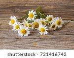 daisy chamomile flowers on... | Shutterstock . vector #721416742