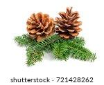 evergreen tree christmas pine...   Shutterstock . vector #721428262
