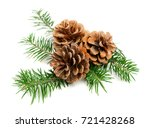 christmas pine cones with... | Shutterstock . vector #721428268
