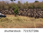 wildebeest and zebra herd at... | Shutterstock . vector #721527286
