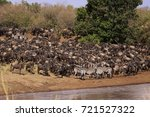 wildebeest and zebra herd at... | Shutterstock . vector #721527322
