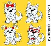 set cartoon character yorkshire ... | Shutterstock .eps vector #721570045