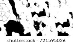 black white grunge vector... | Shutterstock .eps vector #721595026