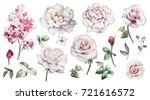 Stock photo set watercolor elements of roses peonies collection garden pink flowers leaves branches botanic 721616572