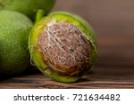 fresh harvest of walnuts on a... | Shutterstock . vector #721634482