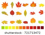 colorful autumn leaves isolated ... | Shutterstock .eps vector #721713472