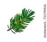 hand drawn fir tree twig ... | Shutterstock .eps vector #721794526