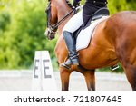 close up image of horse with... | Shutterstock . vector #721807645
