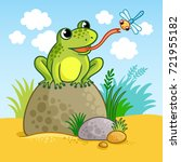 The Frog Sits On A Large Rock...