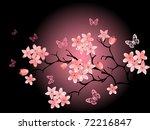 cherry blossom   black... | Shutterstock .eps vector #72216847