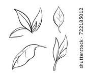 tea leaves set in lines  vector ... | Shutterstock .eps vector #722185012